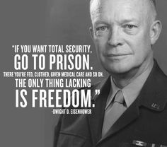 If you want total security, go to prison. There you're fed, clothed, given medical care and so on. The only thing lacking is freedom.