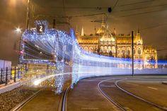 Hungary, Budapest, Louvre, Building, Travel, Faith, Bird, Collection, Attila