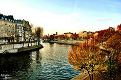 Paris les quais de seine by Anne-Sophie Hostert