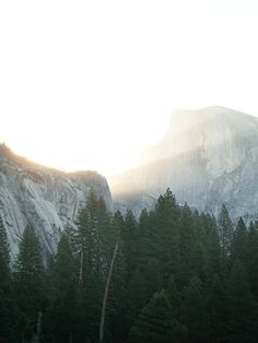 Yosemite from Cereal Magazine V. 10