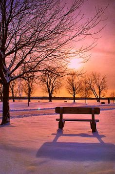 Instant Access To 7250 Breathtaking Landscape Designing Pictures, Ideas, Designs and Projects For Your Dream Home! Home Landscape Ideas Winter Szenen, Winter Sunset, Winter Magic, Beautiful Sunset, Beautiful World, Beautiful Places, Beautiful Pictures, Snow Scenes, Winter Beauty