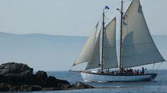 Camden Maine Sailing At Its Best | Schooner Olad