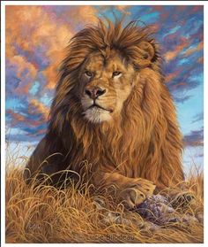 DIY Oil Painting By Numbers Kit Animals Lion Painting On Canvas Home Decoration Home Wall Art Picture Artwork Lion Painting, Oil Painting On Canvas, Painting Abstract, Animal Paintings, Animal Drawings, Oil Paintings, Lion Of Judah, Lion Art, Eye Art