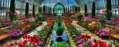 Sunken Garden Como Conservatory, Como Park, St Paul, Minnesota