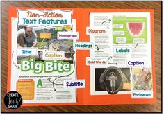 DIY Text Features Poster. Fun, hands-on activity to introduce non-fiction text features.