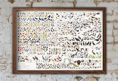 39 x 27  Perhaps our most ambitious taxonomical undertaking yet, this is your field guide to the birds of North America! The product of over 400 hours of intricate illustration work by our talented team of artists, this unabridged aviary features over 740 fair-feathered friends drawn to scale and sorted by species, covering the continent's avifauna (both native and introduced, as designated by the National Audubon Society and the Cornell Lab of Ornithology) from common sparrows, jays, and…
