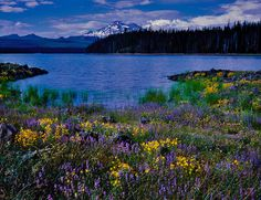 Photo of Elk Lake with South Sister in the background, along Central Oregon's Cascade Lakes Highway.