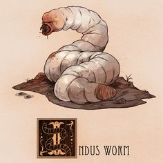 I is for Indus Worm by Deimos-Remus. Name: Indus Worm Area of Origin: Medieval Europe, Greece The Indus Worm was a large, white carnivorous worm that resided around the Indus River in Asia. The creature appeared in many medieval European bestiaries, thou Fantasy Creatures, Mythical Creatures, Folklore, Greek Mythological Creatures, Character Concept, Character Design, Legendary Creature, Creatures Of The Night, Creature Design