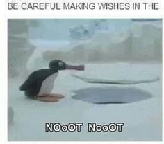 noot noot Music Bands, Emo Bands, Fall Out Boy, Tumblr Stuff, Tumblr Funny, Soul Punk, El Humor, Humour, Lol