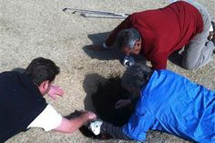 #Sinkhole swallows golfer: Friends come to the rescue