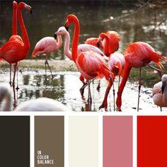 2016, color barro, color coral, color pluma de flamenco, color verde pantano, coral y rosado, gris y blanco, gris y marrón grisáceo, marrón y coral, rosado, rosado y marrón, tonos corales, tonos rosados.