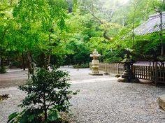 Tokyo Tour, Outdoor Furniture, Outdoor Decor, Garden Bridge, Tours, Outdoor Structures, Backyard Furniture, Lawn Furniture, Outdoor Furniture Sets