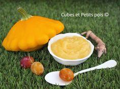 Purée de pâtisson mirabelle pour mon bébé - https://www.cubesetpetitspois.fr/recette-bebe-8-mois/puree-patisson-mirabelle-poulet/