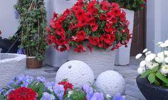 Kobea Ogrody i Bruki Piotr Tyrna Piękny oryginalny element dekoracyjny ogrodu. Doskonale wpływa na klimat miejsca,dodaje charakteru.