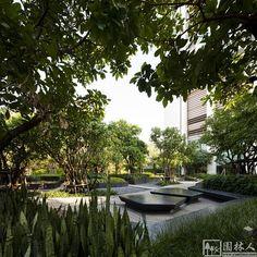 Life @ Ladprao Urban Park von Shma Designs in Bangkok, Thailand Rustic Landscaping, Tropical Landscaping, Garden Landscaping, Landscaping Ideas, Landscape Architecture Design, Green Architecture, Landscape Architects, Landscape Designs, Contemporary Landscape