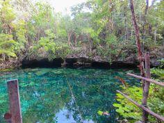 Swimming at Cenote Nicte-Ha Near Tulum, Mexico   brittanymthiessen.com