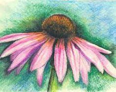 watercolor pencil art