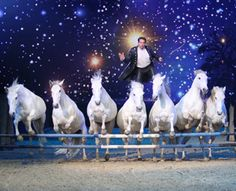 See LORENZO the flying French Man at Your Hprse Live this November. Visit yourhorselive.co.uk to book tickets now.