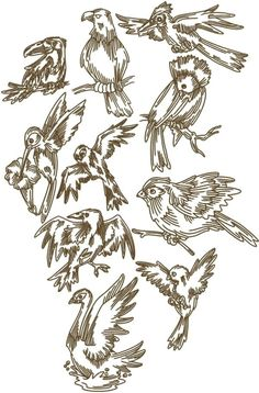 Advanced Embroidery Designs - Bird Set