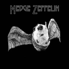 Hedge Zeppelin – The Quills Remain The Same