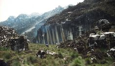 Zebra Wall Jalur antara pos pendakian Freeport ke Basecamp Cartenz