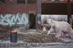 Kevin Peterson, a Houston-based artist, created a painting series of innocent and fragile young girls against the backdrop of unrestrained graffiti. The artwork Urban Painting, Artist Painting, Silk Painting, Bear Paintings, Hyper Realistic Paintings, Ghost In The Machine, Colossal Art, Surrealism Painting, Grid Design