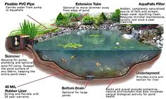 The Owner-Built Pond and Waterfall   Clearwater Landscapes