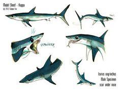 Shortfin Mako Shark - Sheet Kappa by Culpeo-Fox