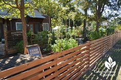 homemade fence front yard food garden Central Texas Gardener
