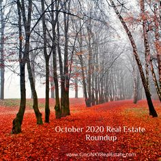 Check out some of the great real estate reads from October 2020!