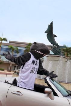 8 Razor The Shark Nsu S Mascot Ideas Shark Nova Southeastern University Mascot