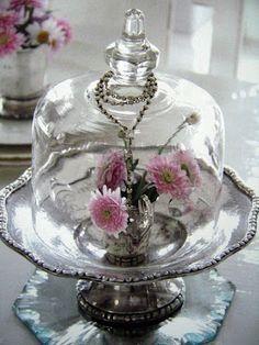 Silver  Glass Cloche