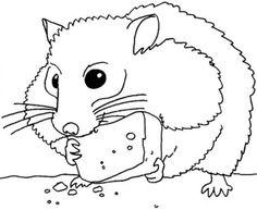 cca1fb8f298265b49e1e7c30c2686a44 gerbil hamstersjpg - Hamster Coloring Pages