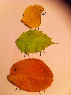 Leaves animals