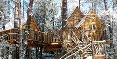 Dormire in una casa sull'albero è il sogno di molti bambini e di molti adulti, è…