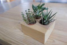 Mini jardinière en palette - DIY