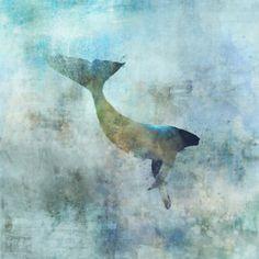 Sea Whale 01: Giclee Fine Art Print 13X19