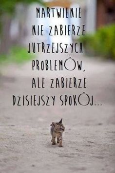 ♪♪♪ Don't worry, be happy! Swimming Motivation, Motivational Quotes, Inspirational Quotes, Humor, Good Advice, Motto, Inspire Me, Wise Words, Quotations