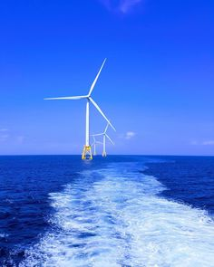 Offshore wind farms are to be built for around half the price of previous ones.