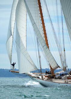 Paradise is sailing