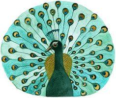 geninne (peacock!)