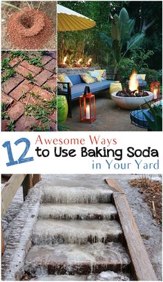 12 Awesome ways to use baking soda in the garden- tips and tricks to use baking soda to make the most of your yard. tips baking soda 12 Awesome Ways to Use Baking Soda in the Garden Pool Garden, Lawn And Garden, Garden Paths, Garden Landscaping, Garden Trellis, Landscaping Design, Water Garden, Herb Garden, Outdoor Projects