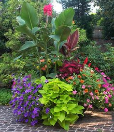 Love these colors together.... container garden