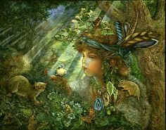 # NATURE BOY; BY JOSEPHINE WALL