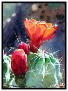 """""""Claret Cup Cactus"""" - Original Watercolor by David Drummond Cactus Painting, Watercolor Cactus, Cactus Art, Watercolor Images, Watercolor Paintings, Cactus Pictures, Desert Art, Guache, Arte Floral"""