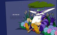 Sonic Channel (Wallpaper) big the cat Big The Cat, Big Cats, Sonic Heroes, Channel Art, Purple Cat, Sonic Art, Sonic Boom, Comic Games, Great Friends