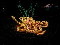 Touch the Southwest's Travel Blog: Pick of the Month: River of Lights in Albuquerque, NM