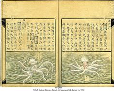Nittoh Guiofu: Gensen Kanda, On Japanese Fish, manuscript in Chinese and Japanese on paper, Japan, ca. 1760.