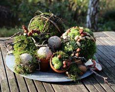 dekoidee moos - New Sites Deco Floral, Floral Design, Creative Decor, Garden Art, Floral Arrangements, Fall Decor, Diy And Crafts, Succulents, Christmas Decorations