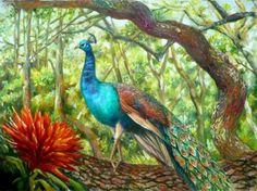 Nancy Tilles ~ Peacock Perched